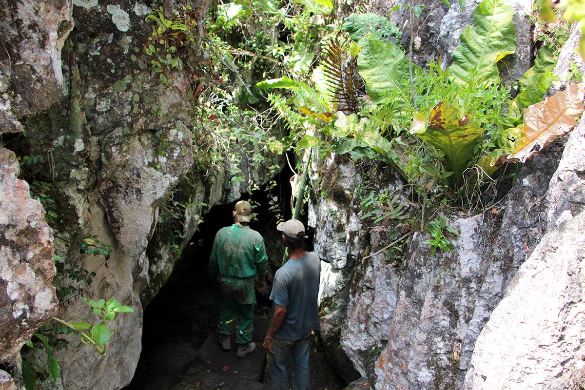 Cueva del nitro zapatoca colombie