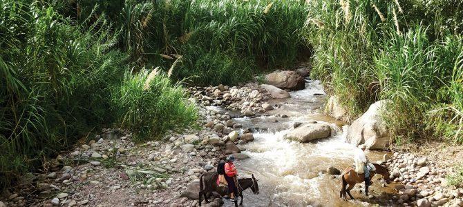 Nos projets en Colombie