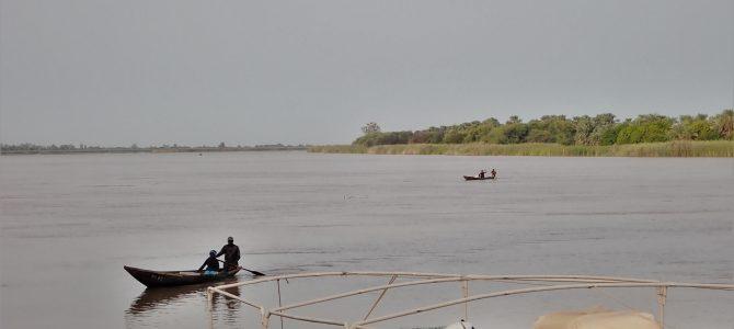 Recherche auditeur financier programme AFD au Sénégal