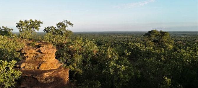 Recherche auditeur financier projet Burkina Faso