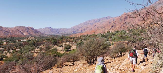 Maroc bilan 2016