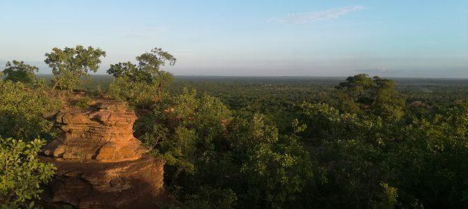 >>Tétraktys recrute un volontaire de Solidarité Internationale pour son projet au Burkina Faso<<